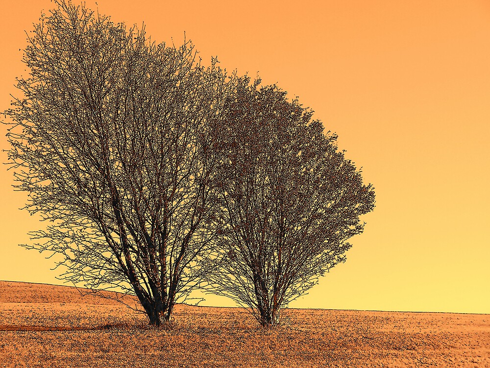 Orange Landscape 4 by Gene Cyr
