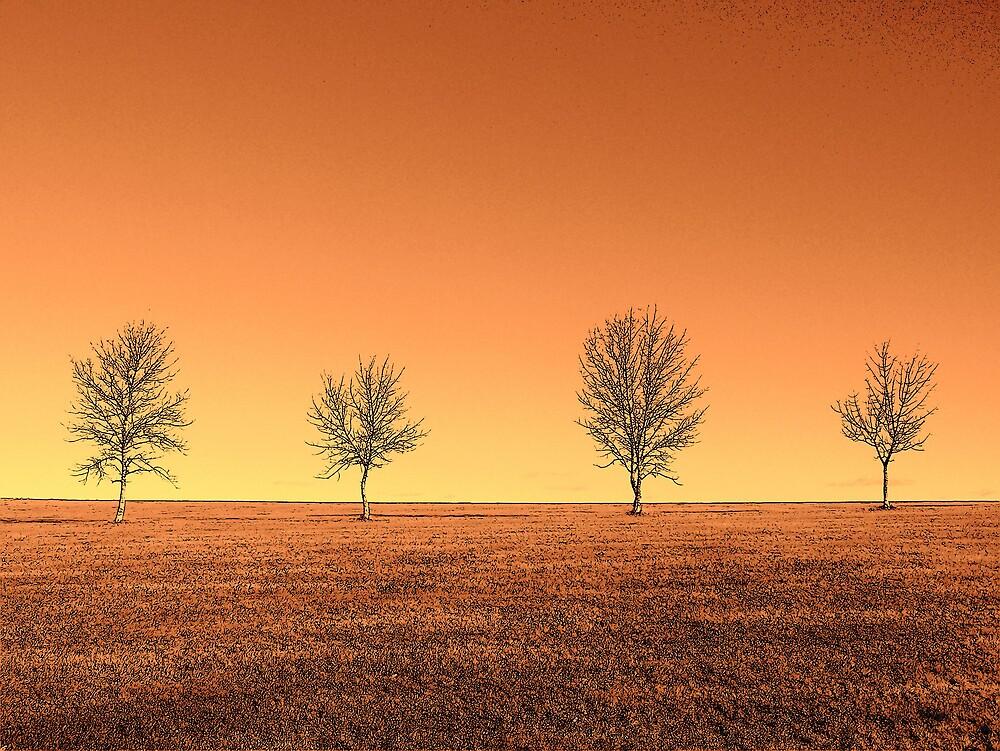 Orange Landscape 5 by Gene Cyr