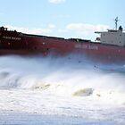Pasha Bulker - shipwreck by naemick