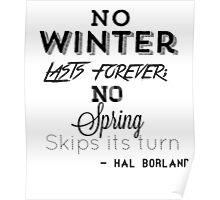 no winter lasts forever Poster