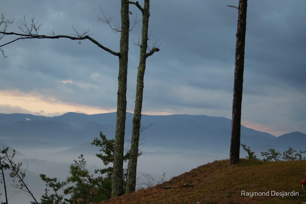 Smoky Mountains  by Raymond Desjardin