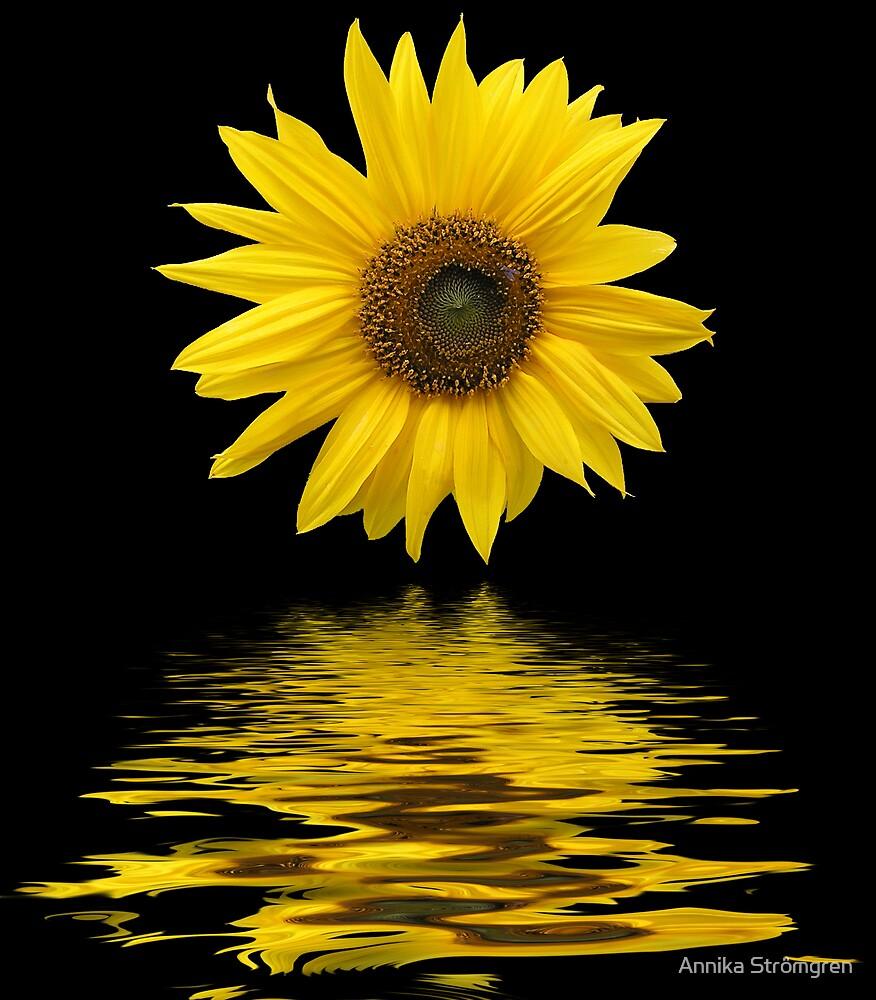 Floating sunflower by Annika Strömgren
