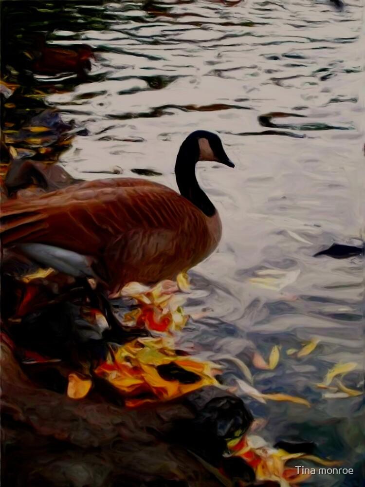 Goose by Tina monroe