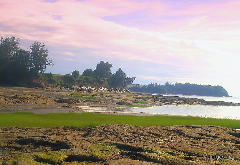Nova Scotia Seascape by sherryconley