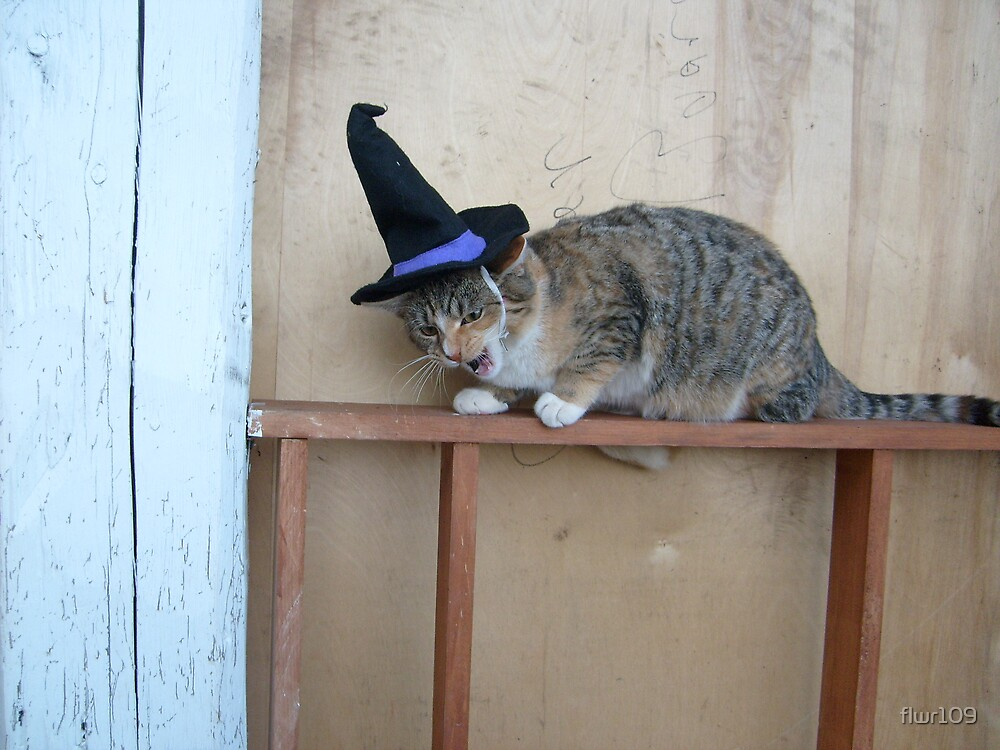 Witchy Kitty by flwr109