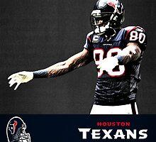 NFL Houston Texans by Dan Snelgrove
