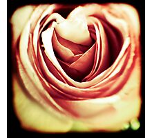Acid Rose Photographic Print