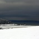Ebey&#x27;s Landing Snow by Rick Lawler