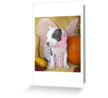Pretty Boy Greeting Card
