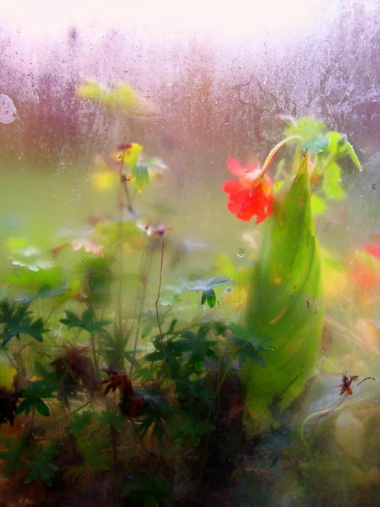 realm of stillness by Natania Rogers