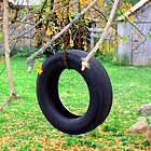 Tire Swing by nikspix