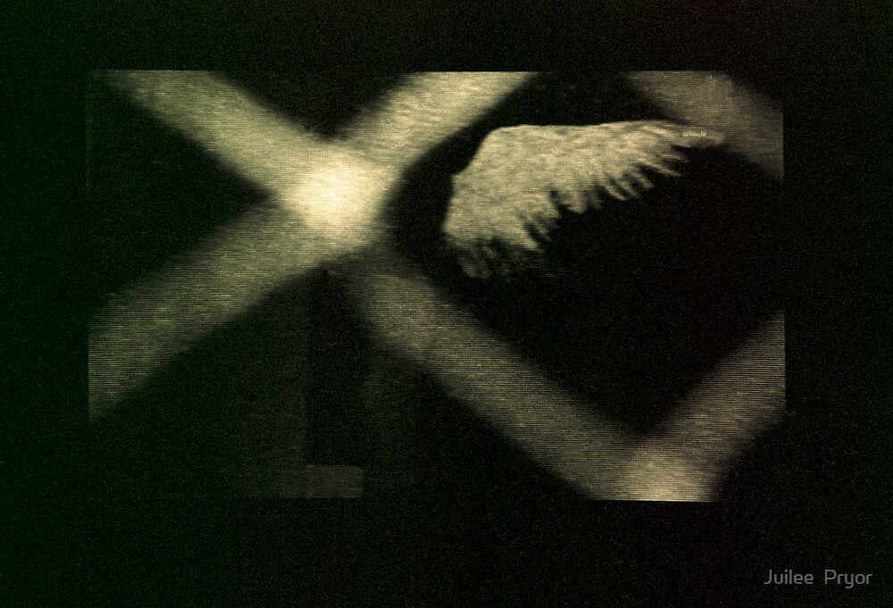 angel shadow by Juilee  Pryor