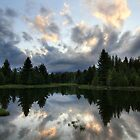 Reflection by David Kocherhans