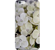 Healing Heart iPhone Case/Skin