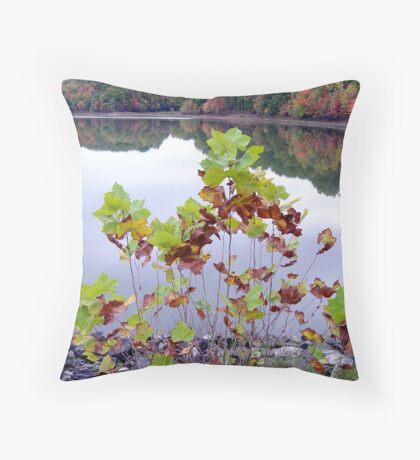 Plant in multicolor Throw Pillow