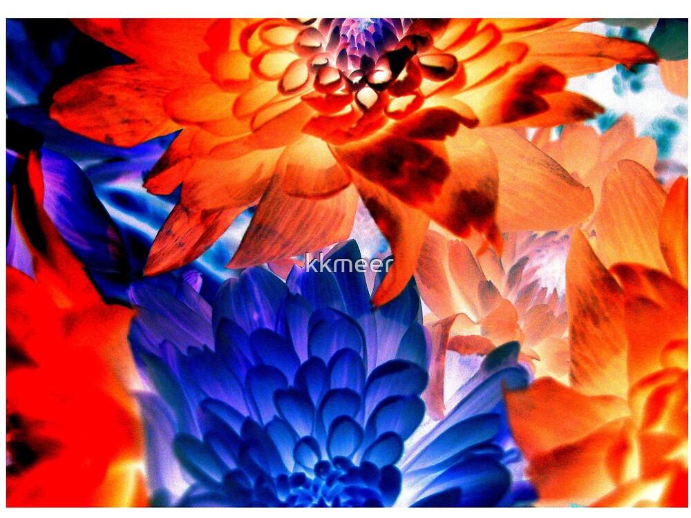 Vibrant Flowers by kkmeer