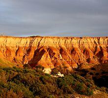 Prehistory by Varinia   - Globalphotos