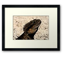 Bearded Dragon Indian Ink Framed Print