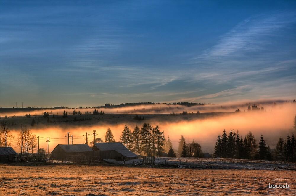 Mist land sunrise 2 by bocosb
