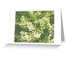 little leaves Greeting Card