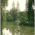 The Lake in Central Park by Bernadette Claffey