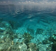 Maldives Seacape 2 by geoff curtis