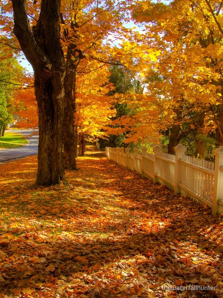 Golden Autumn Path by thewaterfallhunter