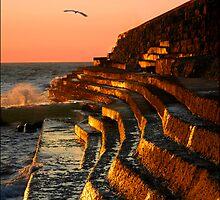 Golden Sunset by Brenda Bullock