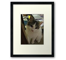 I did NOT eat the canary Framed Print