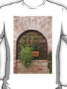 Stone, Ivy, And Grillwork T-Shirt