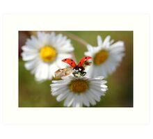 Ladybug almost flying away. Art Print