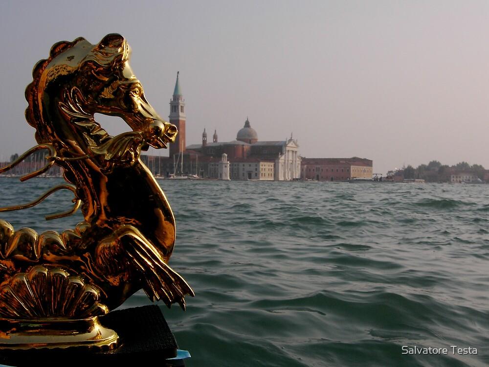 Seahorse by Salvatore Testa