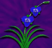 Blue Orchids by Aurora