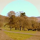 Peak District - Hathersage by sanyaks