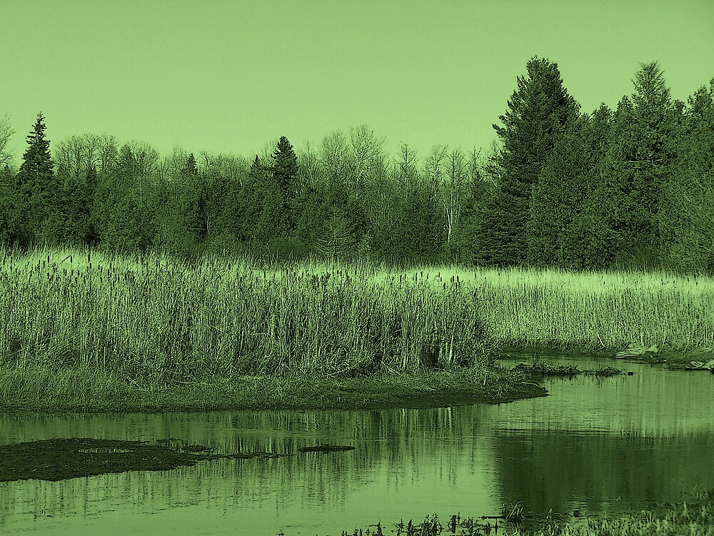 Landscape In Green 2 by Gene Cyr