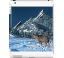 The Flatirons And Deer iPad Case/Skin