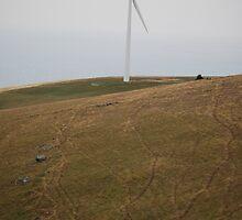 wind farm - starfish hill by Princessbren2006