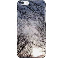 Silent Trees iPhone Case/Skin