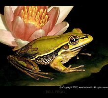 Froggy by Birte