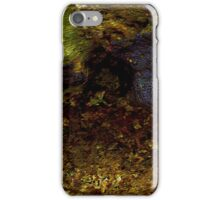 Indonesian Coral iPhone Case/Skin