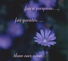 A Greater Purpose by blue7seahorse