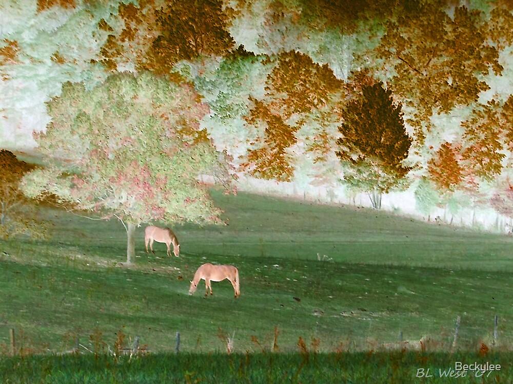 Horses Grazing by Beckylee