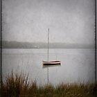 Lone Boat by Debra Fedchin