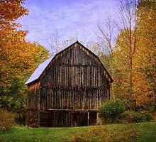 The Simplicity of a Barn by Debra Fedchin