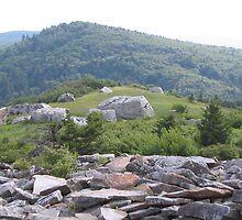 Spruce Knob Trail View by VickyG