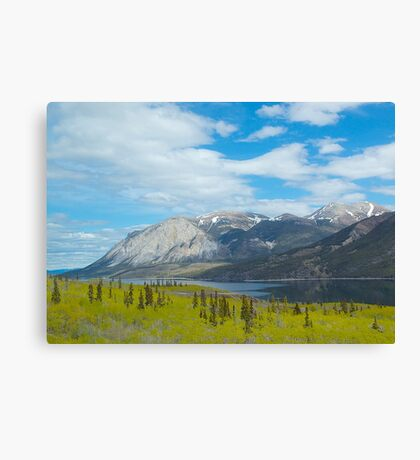 Mountains along the Yukon Trail, BC, Canada. 2012. Canvas Print