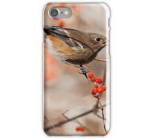 bird - gc iPhone Case/Skin