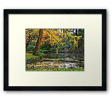 Autumn #2, Alfred Nicholas Memorial Gardens, Victoria, Australia Framed Print
