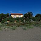 The House On The Beach by wiggyofipswich