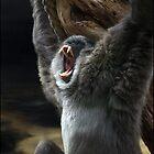 AAAAAAaaahhhhhh! by carol brandt